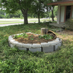 My newly constructed sweet potato pit.
