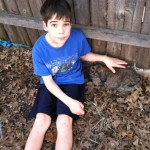Cam with rabbits 2011