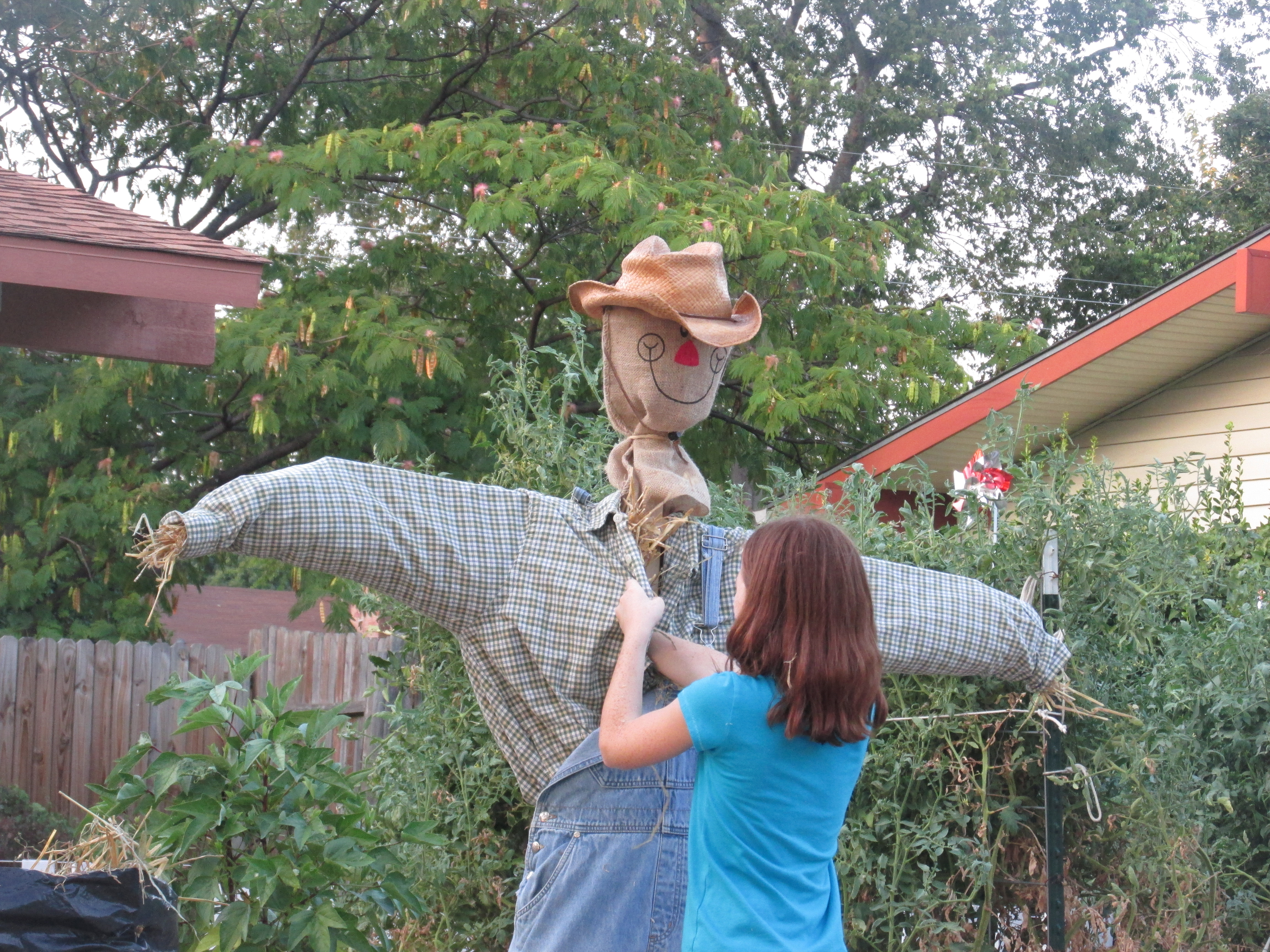 helpers, scarecrow, seeds 002