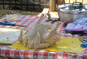 Chicken all finished, just like from the grocery.