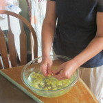 Squash casserole, drying basil, saving squash seeds, fig tree 010