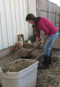 """The """"raised bed"""" that my coop rests on."""