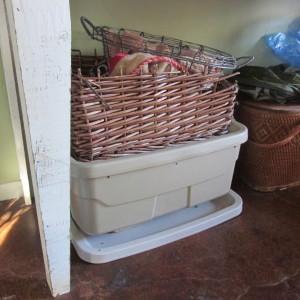 Worm bin in disguise under my hutch.
