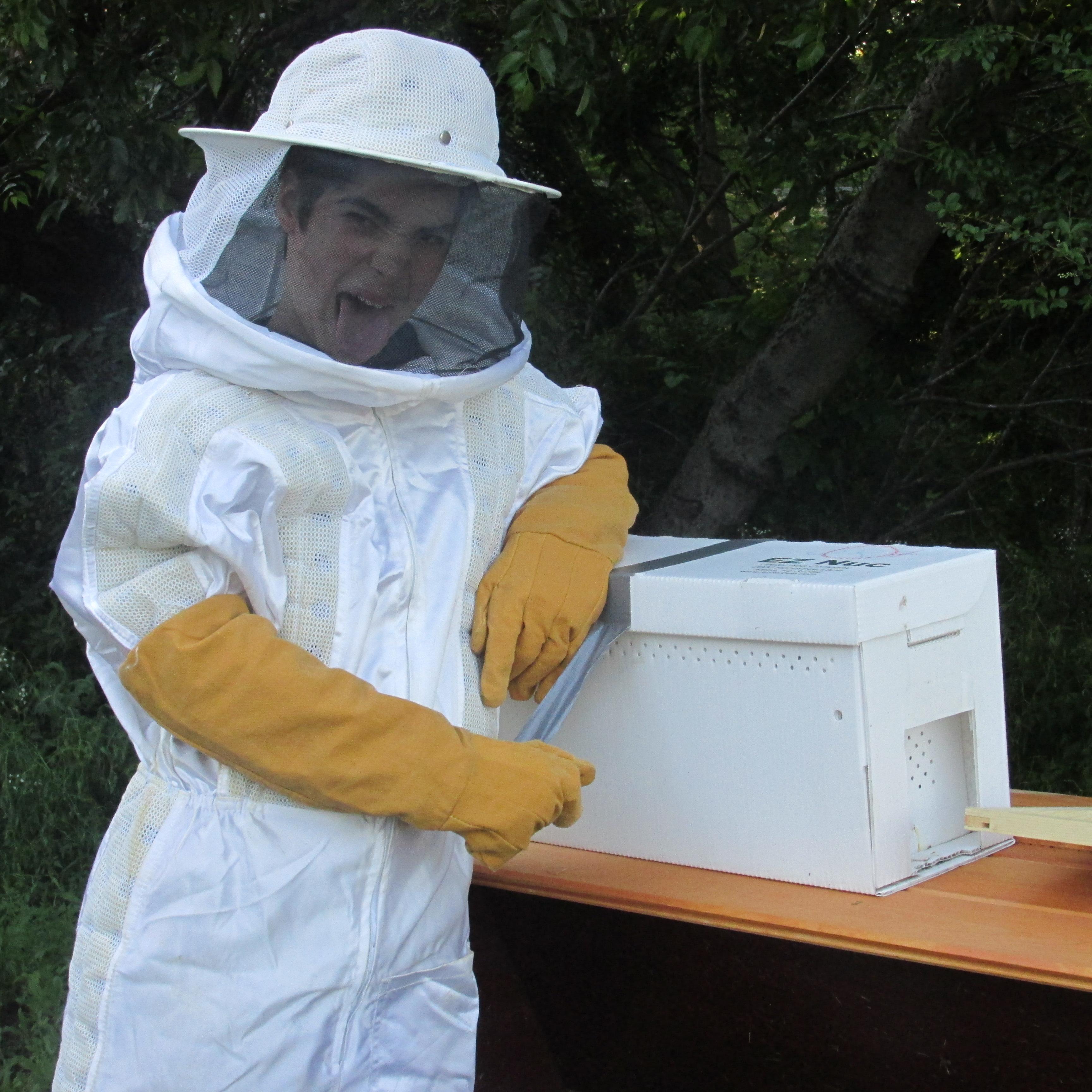 Bee Nuc Install 002